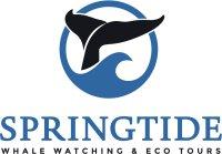 SpringTide-Logo